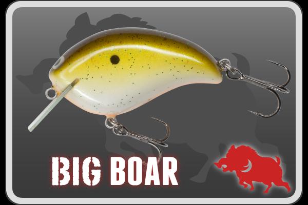 banner_sub_bigboar