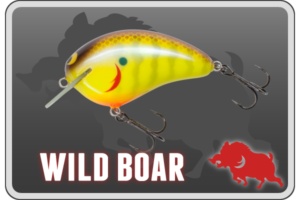 banner_sub_wildboar