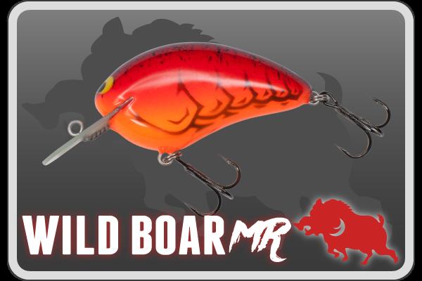 banner_sub_wildboarmr
